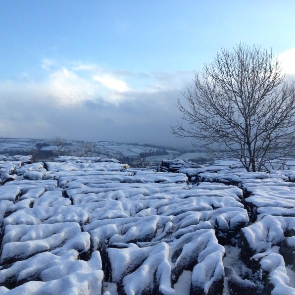 Snowline wonderland